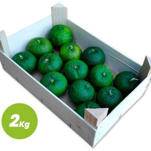 Yuzu Ecológico Verde